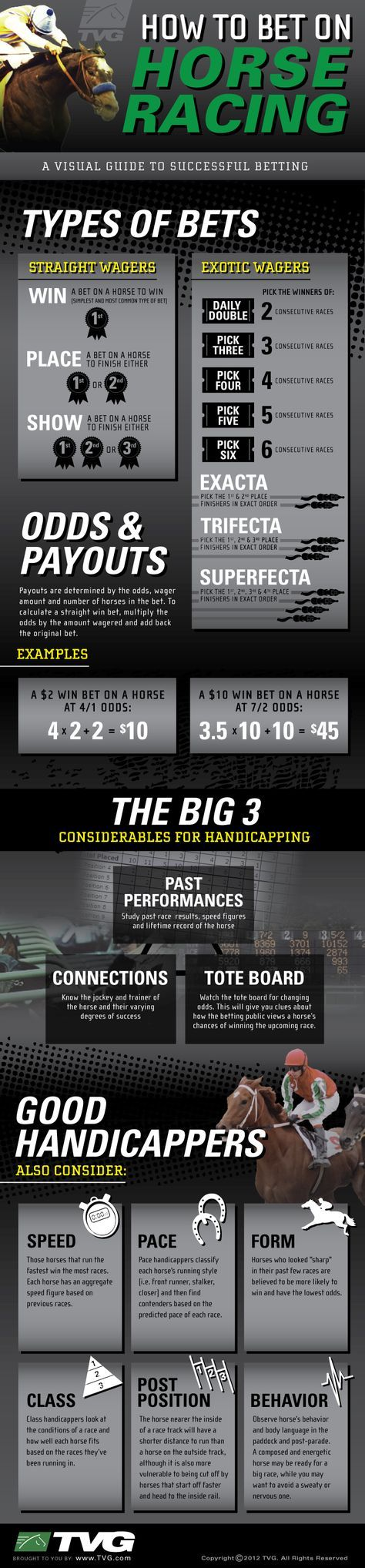How To Bet On Horse Racing INFOGRAPHIC - How To Bet On Horse Racing [INFOGRAPHIC]